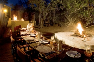Best Beach Wine and Wilderness Vacation in South Africa