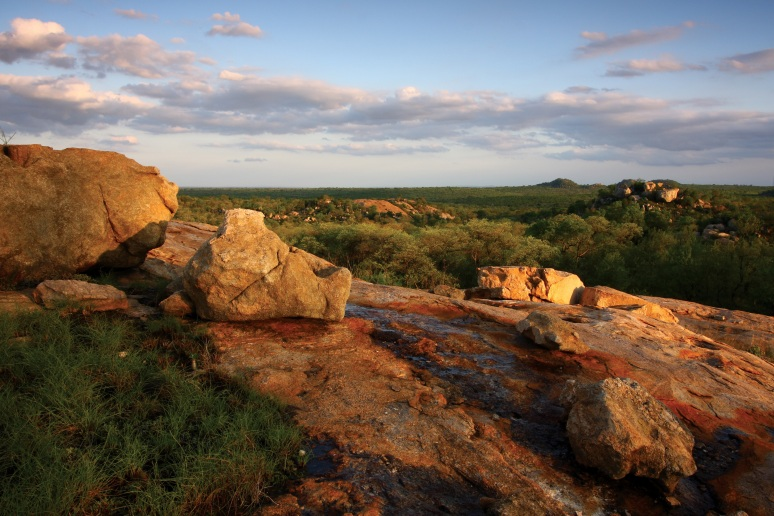 Kruger National Park concession