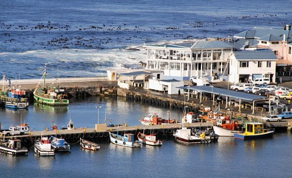 Kalk Bay harbor & restaurant