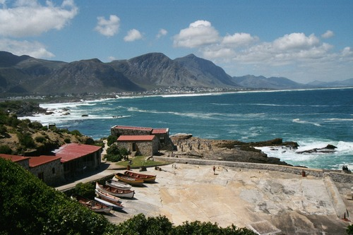 hermanus copy